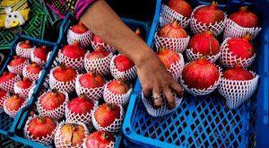 خرید و فروش انار
