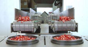شرکت ساخت دستگاه انار دانه کن