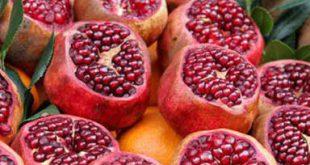 فروش انواع انار