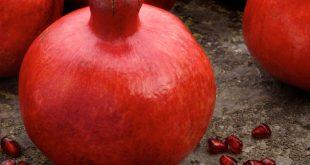 فروش انار قرمز