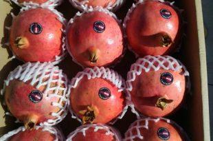 حداقل قیمت انار
